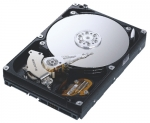 SAMSUNG SpinPoint 400GB  Hard Drive